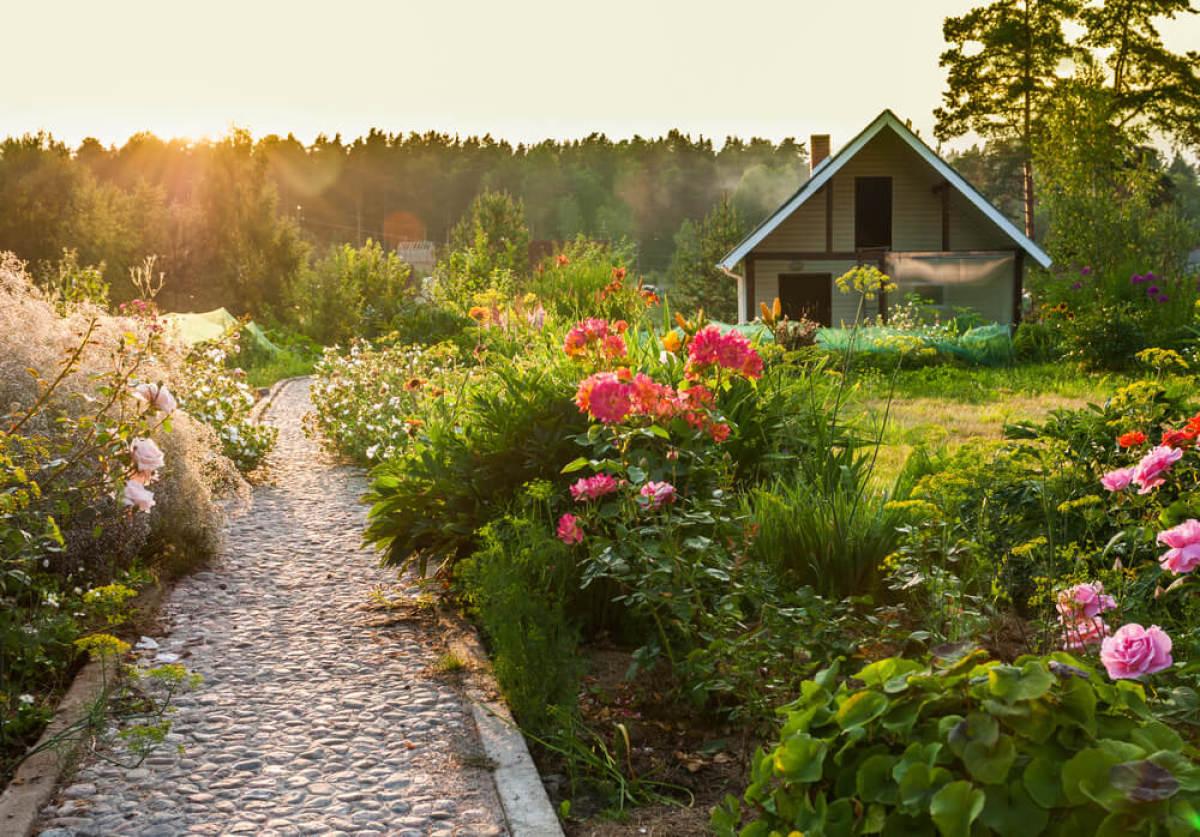 Un jardin d'agrément