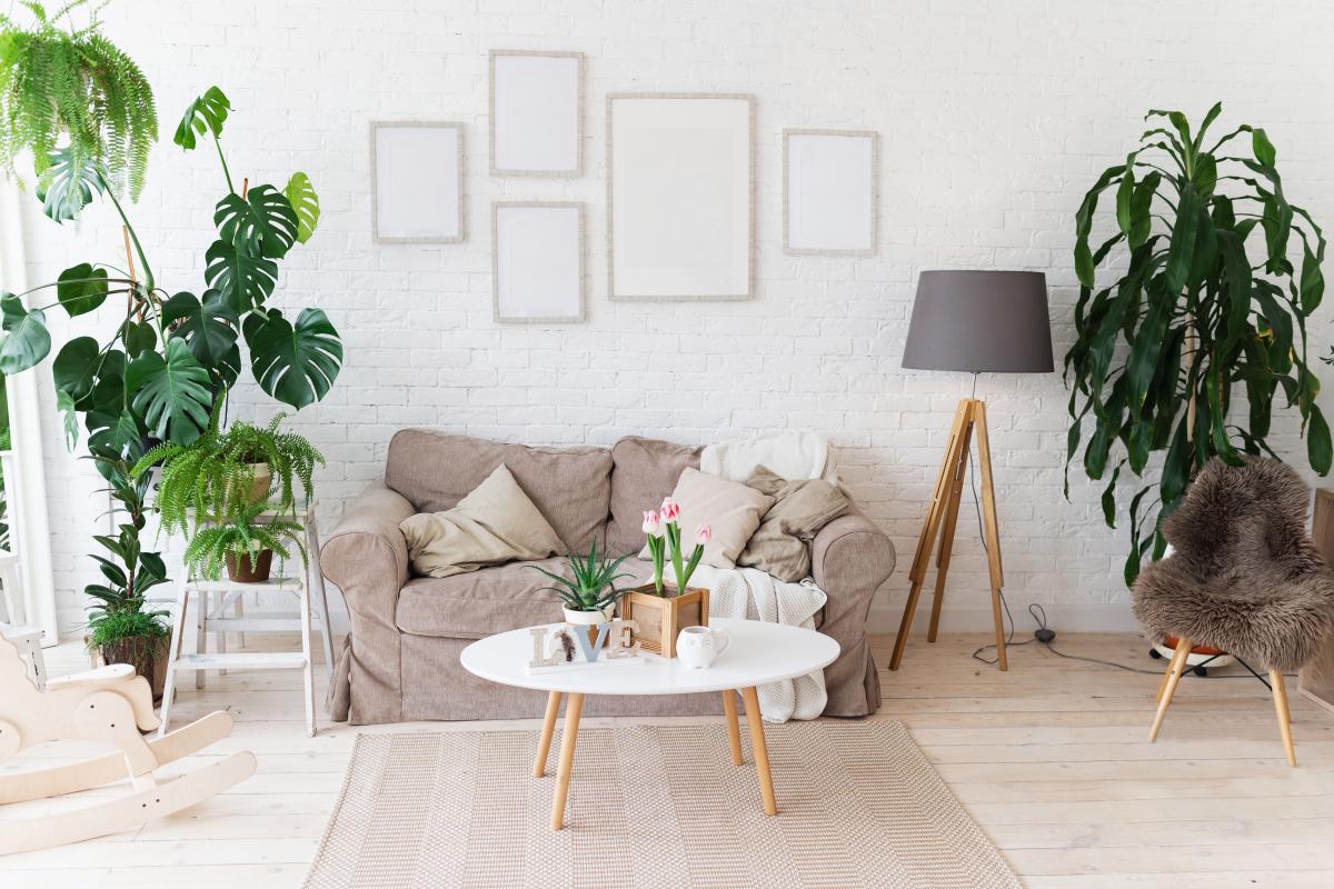 location appartement rennes - un salon bien décoré dans un logement neuf