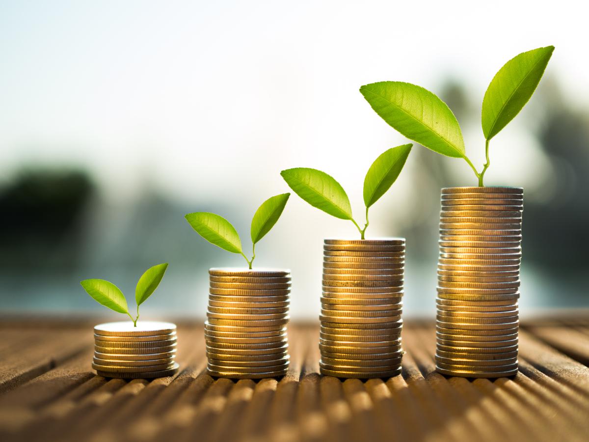 Loi Climat– Pièces de monnaie avec feuilles vertes