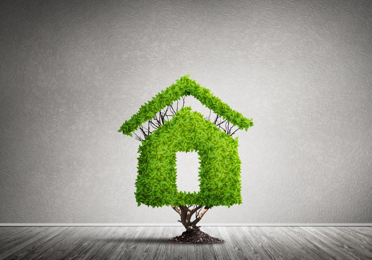 Logements bas carbone à Rennes – Illustration d'un habitat écologique avec maison en bois et verdure