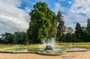Végétalisation à Rennes –Une fontaine du parc Thabor