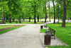 Végétalisation à Rennes - Parc arboré avec chemin de promenade et bancs