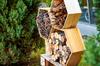 Prairies Saint-Martin à Rennes – Abri à insectes en bois