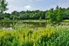 Prairies Saint-Martin à Rennes – Le parc des Gayeulles à Rennes